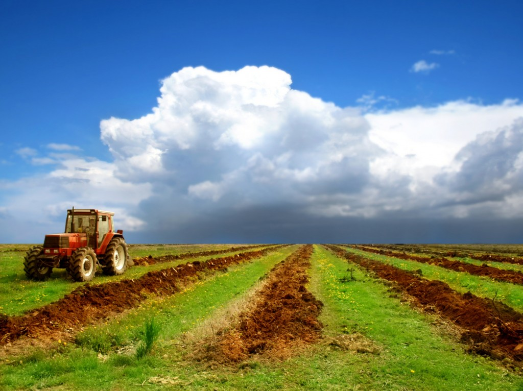 agriculture-wallpapers-7