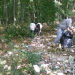Tinerii, invitați la o acțiune de ecologizare a Pădurii Schullerwald