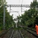 Trenuri de călători oprite în stații, pe tronsonul Lunca Ilvei – Ilva Mică. Vântul puternic a doborât copaci, care au căzut pe calea ferată!