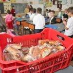 Mai bine de două luni de când a început școala, dar elevii încă nu primesc lapte, corn sau fructe. Vezi de ce!