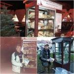 O persoană din Bistrița a DONAT mii de cărți care au ajuns pe rafturile DULAPURILOR din stradă!