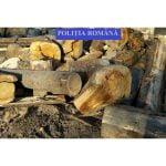 FOTO: Administratorul unei societăți comerciale de exploatare, prelucrare și comercializare a materialului lemnos este cercetat de polițiștii de la Combaterea Delictelor Silvice pentru fals în înscrisuri sub semnătură privată