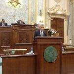Senatorul Ioan Deneș, în continuare pe lista miniștrilor Cabinetului Dăncilă