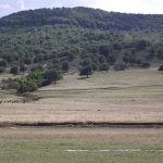 Dealul Cocoșului aduce bani la bugetul local și vara. Primăria închiriază loturi de teren în scop agricol