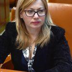 Ce replică le-a dat deputatul Cristina Iurișniți social democraților Daniel Suciu și Doina Pană?