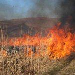 În Ilva Mare, în apropierea pădurii, a izbucnit un incendiu de vegetație uscată. Pompierii luptă cu flăcările pentru ca acestea să nu se extindă