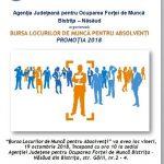 29 de agenți economici oferă peste 350 de locuri de muncă la Bursa pentru absolvenți. Din ce domenii de activitate provin ofertele?