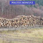 FOTO: Societate de exploatare și prelucrare a lemnului din Leșu, amendată cu 6.000 de lei de polițiști